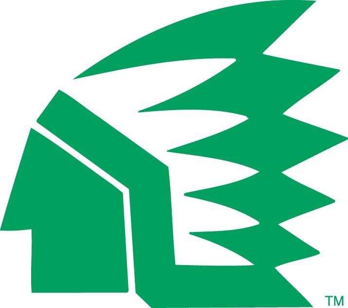 North Dakota Fighting Hawks Primary Logo (1976) -