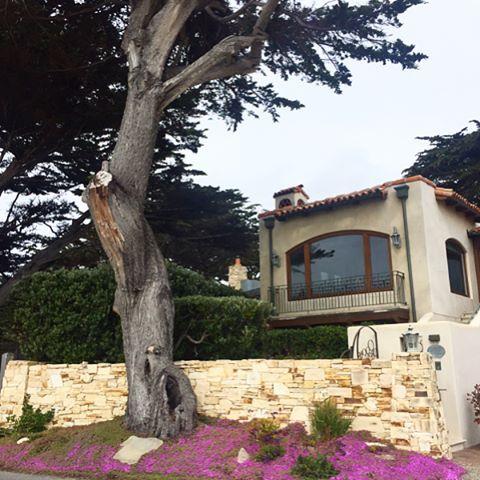 Невероятной красоты маленький городок Кармель, со сказочными домиками, которые ютятся по соседству с ультра современными домами, и все это с видом на океан. Каждый садик и деревцо позируют для обложки журнала про садовый дизайн, а на пляже больше собак ловящих волны, чем детей, которые строят песочные замки. #bigsur #california #katyababash_travel #bigapple_dream #westcoast #carmelbythesea #bigsurlocals #montereybaylocals - posted by ⠀⠀⠀⠀⠀⠀⠀⠀⠀⠀People Photographer…