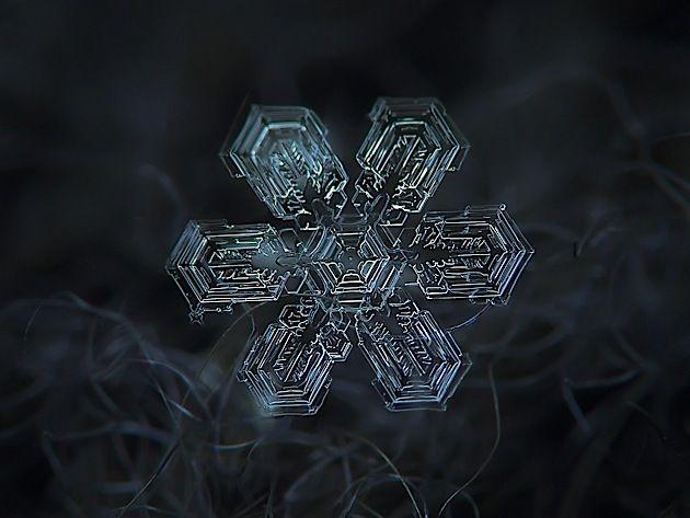 Alexey Kljatov macht ganz besondere Makro-Fotografien. Das hier sind alles Schneeflocken, die er auf einem dunklen Wollstoff abgelichtet hat. Dazu verwendet er eine ganz eigene Technik mit einer Linse, die er vor seiner Canon Powershot befestigt hat. Schne