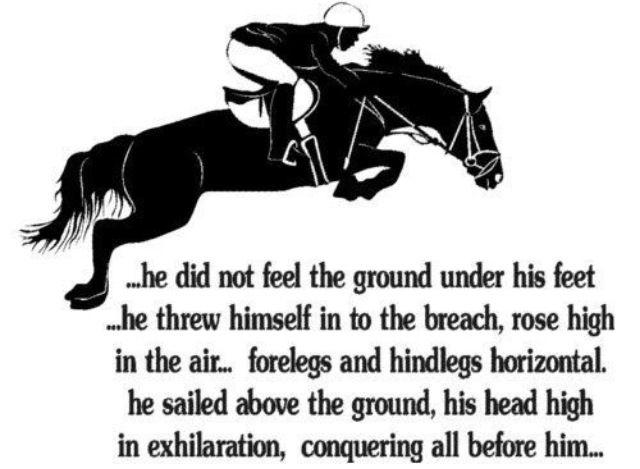 // Horses // Quotes //