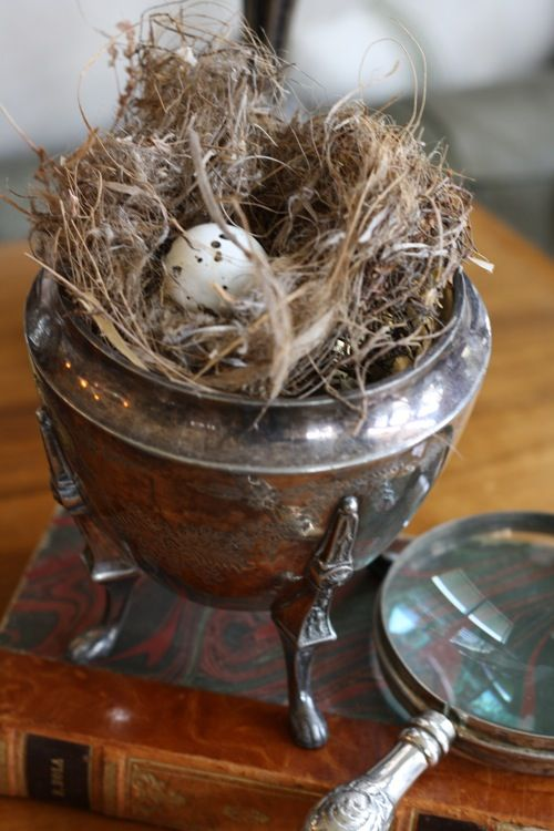 abandoned birds nests are set upon vintage and antique silver