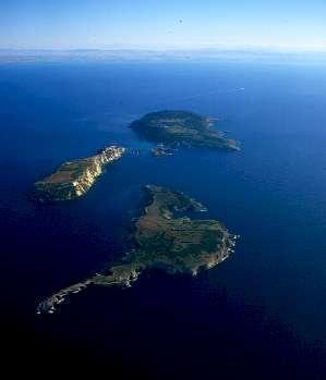 """Le Isole Tremiti per la loro bellezza vengono definite """"LE PERLE DELL'ADRIATICO"""" e sono meta preferita di moltissimi turisti.  Le perle di questo magnifico arcipelago sono San Nicola, san Domino, Cretaccio, Caprara e Pianosa."""