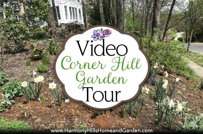 17 best ideas about hill garden on pinterest yard for Spring hill nursery garden designs