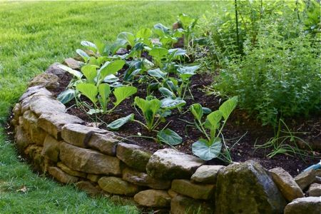 stone raised bed