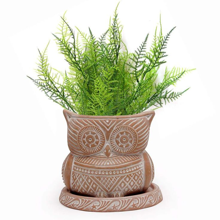 Terracotta Planter White washed with tray (Owl)