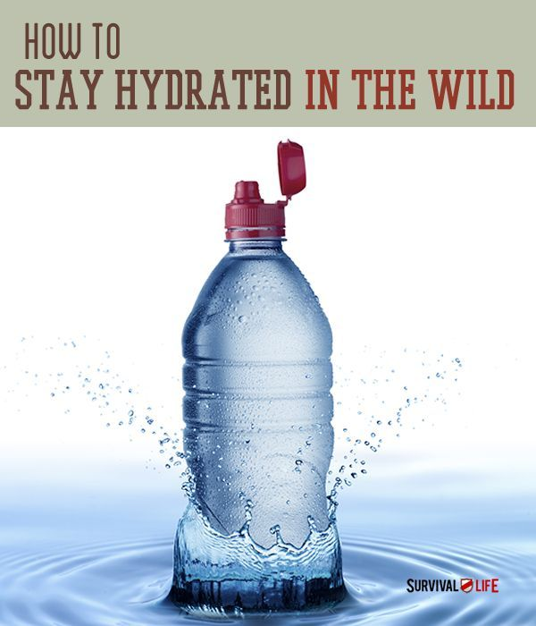 In a survival situation, water is one of your most vital needs. It is with this in mind that we suggest some tips for learning how to find/gather/purify water in the wild, How To Stay Hydrated In The Wild.