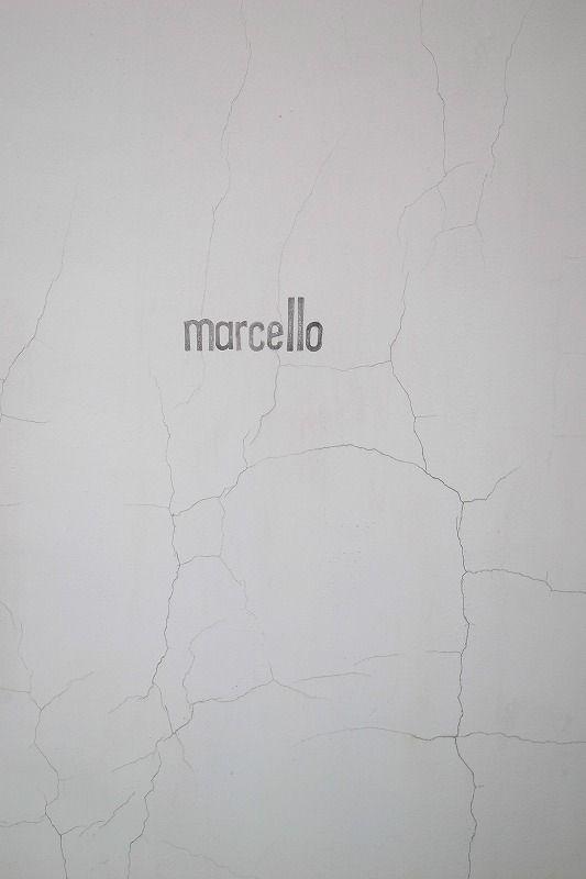 http://www.krank-marcello.com/photoanimal2.html