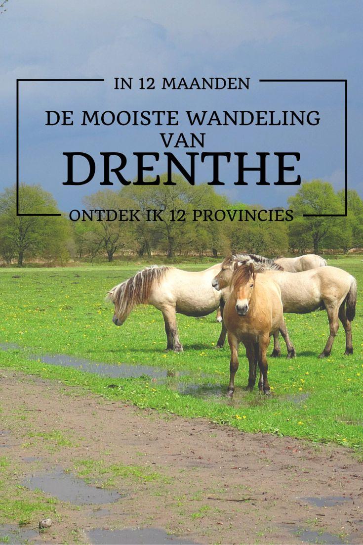 De mooiste wandeling van Drenthe
