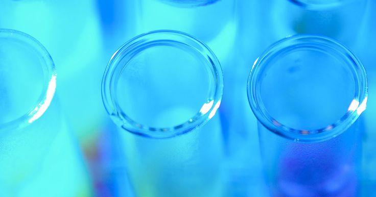 Sobre a catalase. A catalase é uma enzima encontrada nas células dos animais, plantas e bactérias aeróbicas. Uma enzima é uma molécula grande, sintetizada nas células e produzida para agir como um catalisador em uma reação. Cada tipo de enzima desempenha uma função específica, e a função da catalase é converter um subproduto potencialmente nocivo em elementos úteis ...