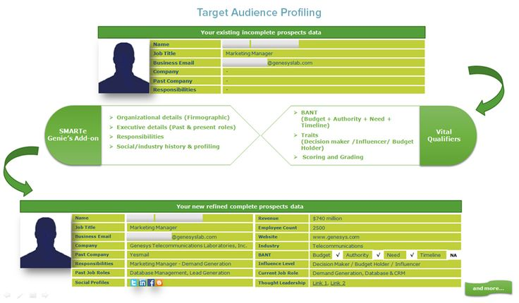 Target Audience Profiling is the best way to prepare for interacting and engaging with your ideal prospects, understanding about the person as well as the organization he/she is working.
