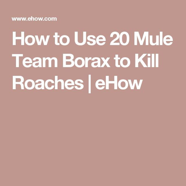 How to Use 20 Mule Team Borax to Kill Roaches | eHow