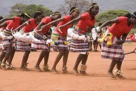 Young venda women dancing for a tribal celebration
