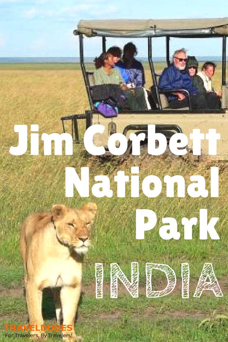 Relish A Family Trip In Summer Amid The Exotic Wilderness! - Jim Corbett National Park, positioned in the bottoms of Himalayas in Nainital of Uttarakhand, is a utopia for wildlife fans in the nation.