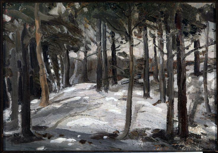 Tom Thomson Catalogue Raisonné | Woods in Winter, 1912 (1912.01) | Catalogue entry