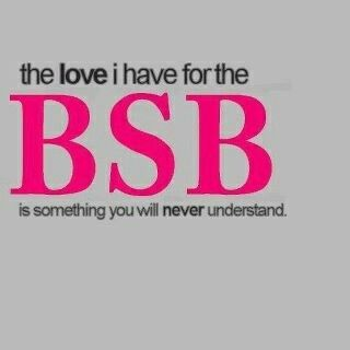 To go to a BSB concert. Something I've wanted to do for almost 16 years..