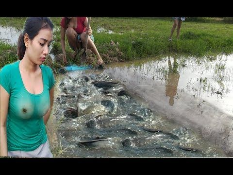 Wow amazing fishing trap how to make a simple fish trap for How to make fish
