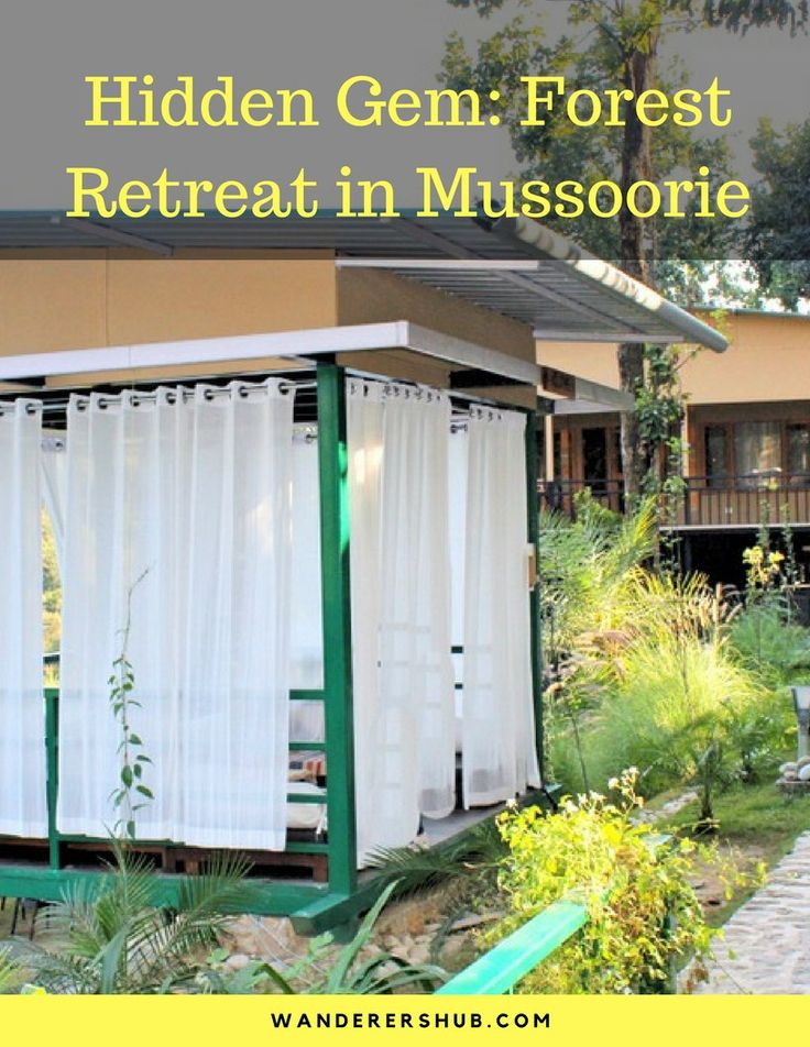 Hidden Gem- Forest Retreat in Mussoorie