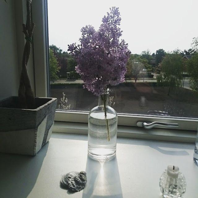 Pulverhexen's DIY: May and June