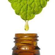 10 olejków eterycznych, które zawsze warto mieć w domu | Akademia Witalności