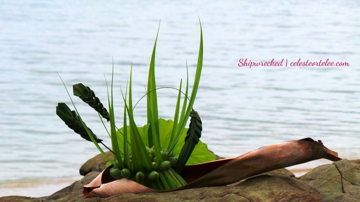 'Shipwrecked' created with mainly leaves