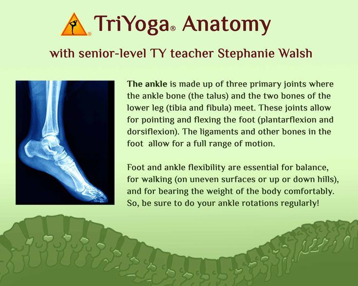 www.triyoga.com kriya.triyoga.com