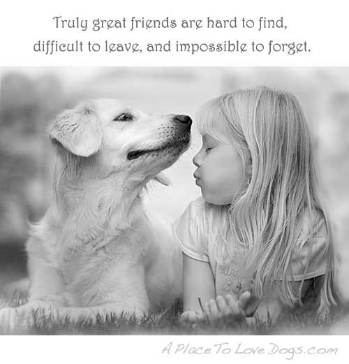 Inspirational Quotes About Dogs | Truly Great Friends   A Place To Love Dogs
