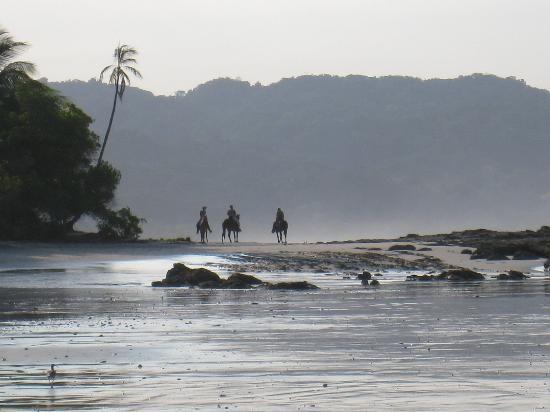 horseback ride on beach -Costa Rica