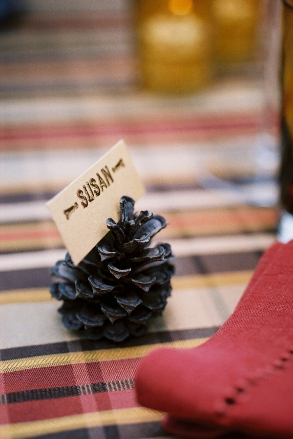 Pinecone placecards...