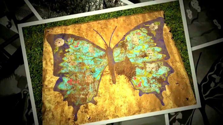 Butterflies by Christina Oiticica ♡