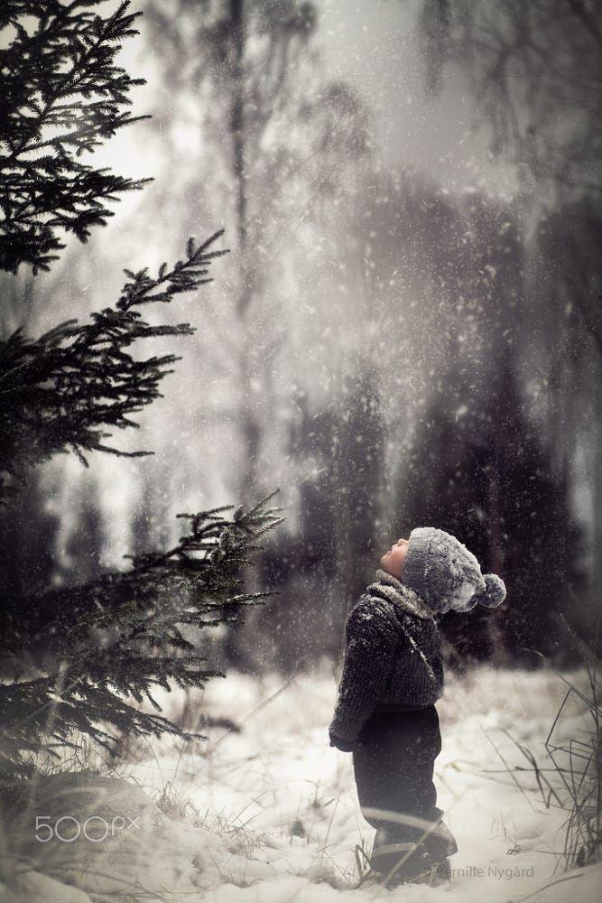 Winter Magic by Pernille Nygård on 500px .......Østmarka, Norway