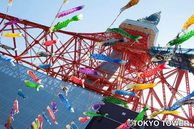Koinobori with Tokyo tower