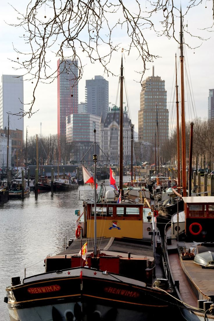 Rotterdam through my lens