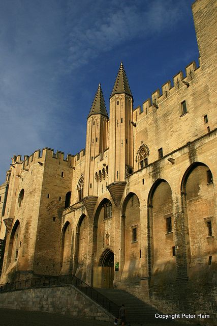 Palais des Papes, Avignon, France Festival... our  Montmartre neighbor produced & directed a play