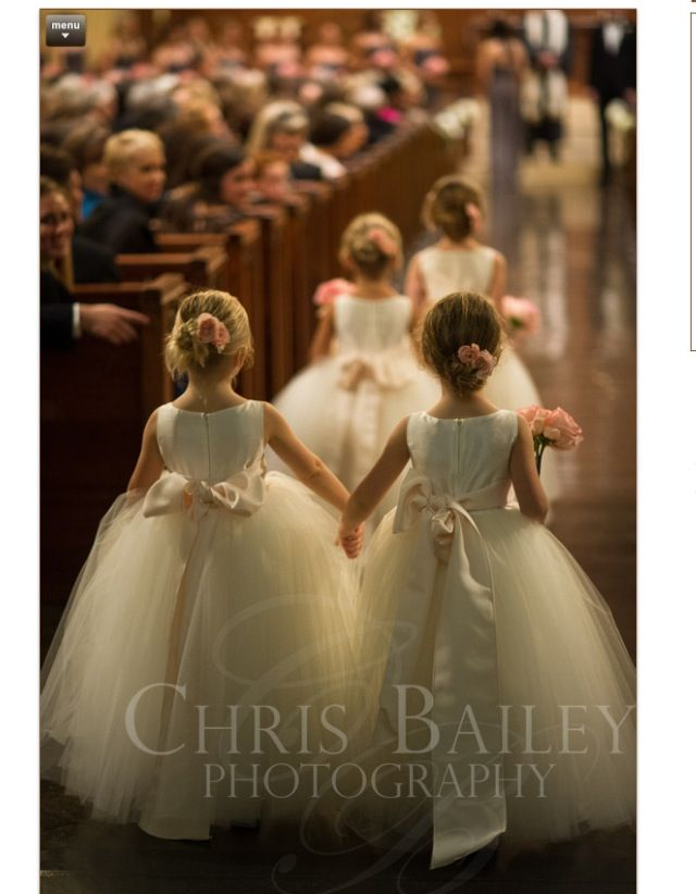 Beautiful photo of flower girls Tulle ivory flower girl dresses with blush sash. Chris Bailey Photography