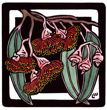 Eucalyptus caesia Square - Limited Edition Handpainted Linocuts by Lynette Weir