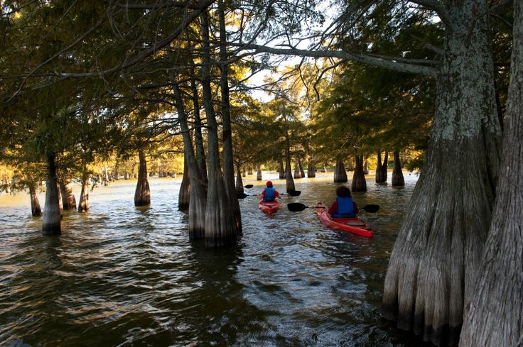 1000 ideas about water parks in mississippi on pinterest for Cabin rentals near hiking trails