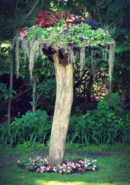 Mount an old circular clothesline upside down, line it with chicken wire and 60% shade cloth. Mount it on top of an old tree stump and plant away!