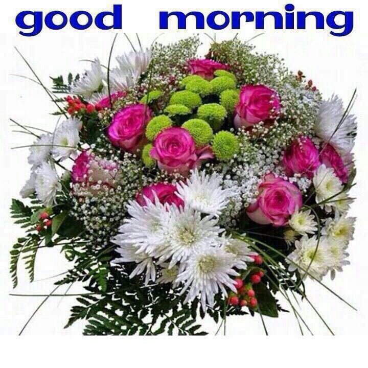 Good Morning Sunday Winter : Images about good morning on pinterest happy
