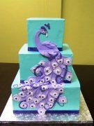 Teal square cake with purple peacock