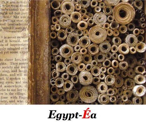 12 février 1990 : Déclaration d'Assouan pour la Renaissance de la Bibliothèque d'Alexandrie | Égypt-actus | Scoop.it