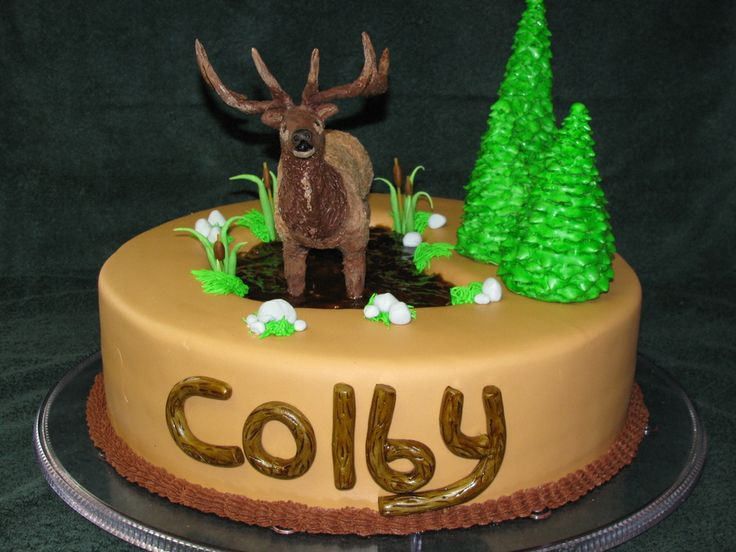 Cake Decorating Melted Chocolate : 11 best images about Hunting Cakes on Pinterest The ...