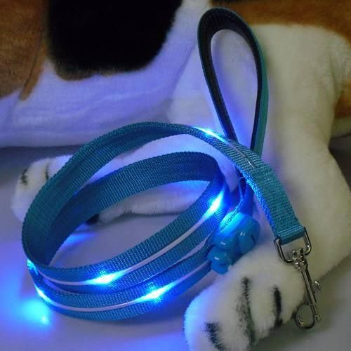 NightSafe Flashing Dog Leash - Blue  A definite need for this during dark winters.
