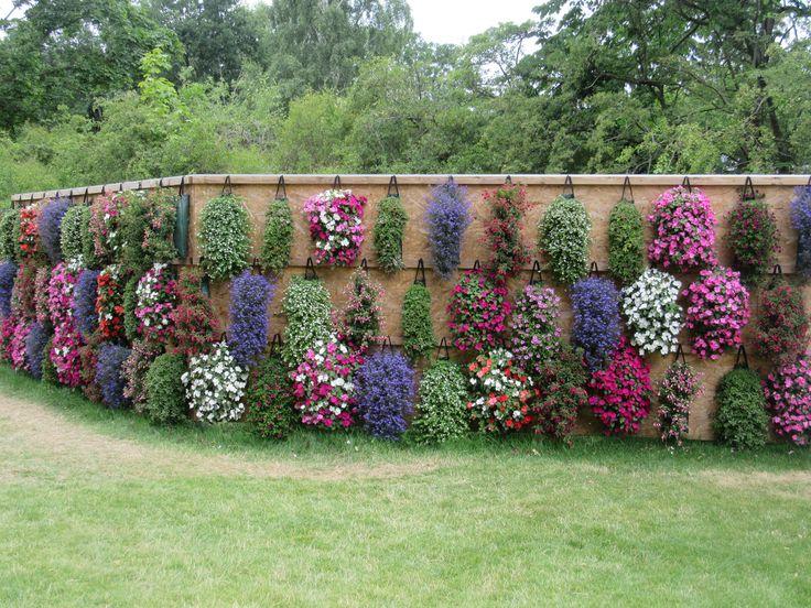 Blumenwand, verschiedene Blumensorten  BUGA-Standort Rathenow