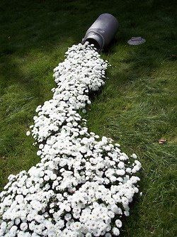 So could do this easily. Just a matter of digging a flower garden in this shape - get a tin from The Tip Shop and hey presto....