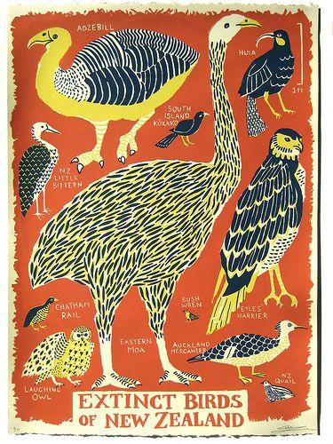 windwrinkle:    fourteenths:    Extinct Birds of New Zealand (by Caleb Luke Lin)    whadda style!!