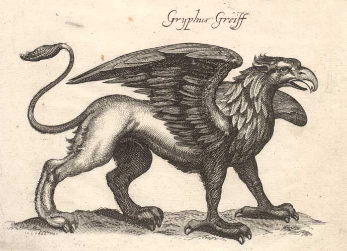 griffon, mythology - body of lion, head of eagle