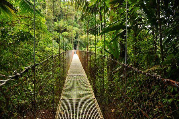 Traverser les ponts suspendus de l'Arenal au Costa Rica.