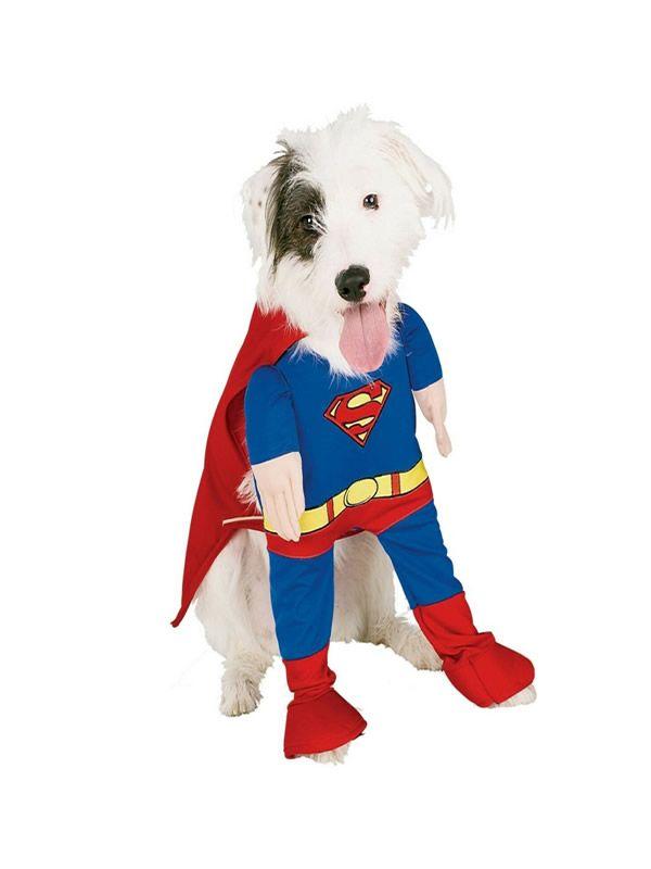 Quereis Comprar Un Disfraz De Superman Para Perro Barato En