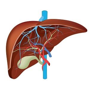 How your genes can cause liver disease |www.health24.com