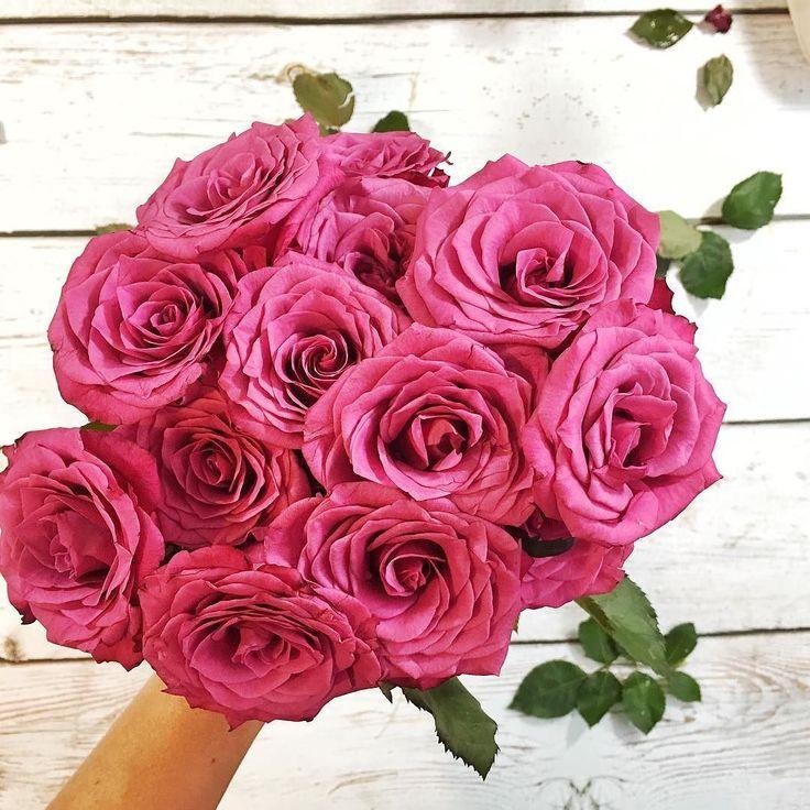 Myślę że takie kwiaty będą idealne. Co Wy na to? Akurat w kolorach PSC prawda? Miłego dnia Wam życzę! Ja dzisiaj goszczę w Gdańsku! #psc #paniswojegoczasu #gdańsk #gala #kobietabiznesu #womeninbiz #businessonline #roses #róże #kwiaty